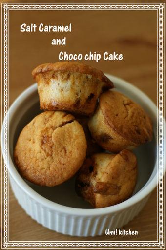 Salt_caramel_choco_chip_cake