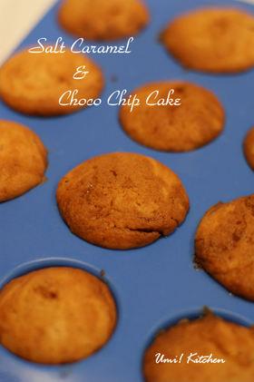 Salt_caramel_choco_chip_cake_3