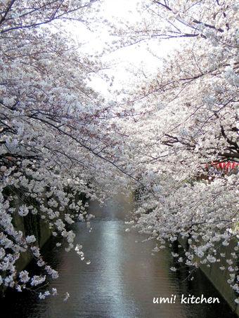 Meguro_river