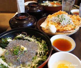 Shirasu_lunch