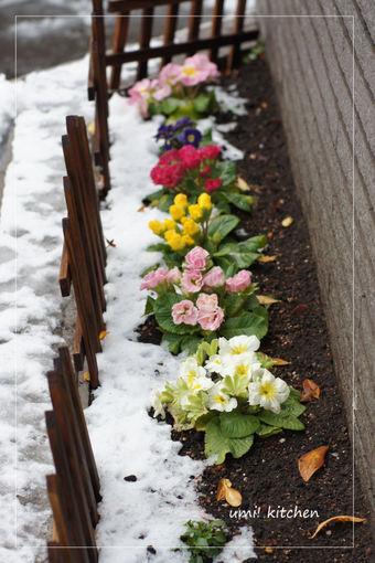 2011_snow