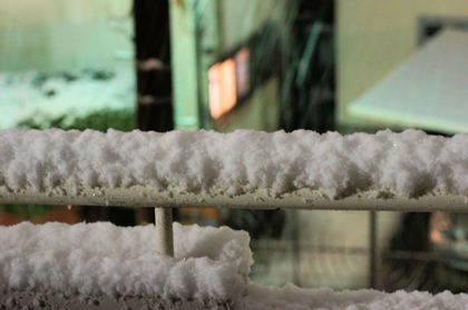 2011_snow_yoko