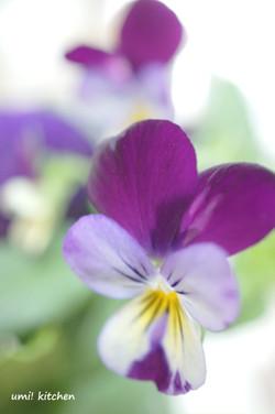 Bouquet_42