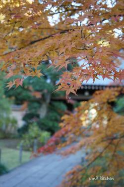 Kawagoe3